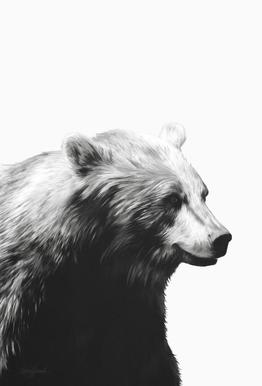 Calm Black and White Aluminium Print