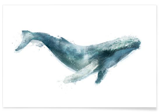 Humpback Whale Illustration Poster