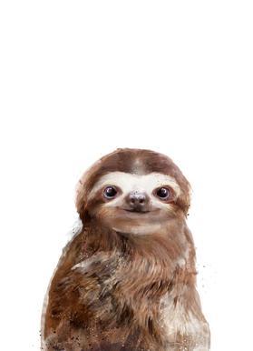 Little Sloth -Leinwandbild