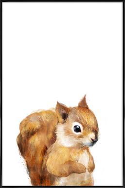 Little Squirrel ingelijste poster