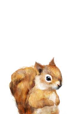 Little Squirrel Aluminium Print