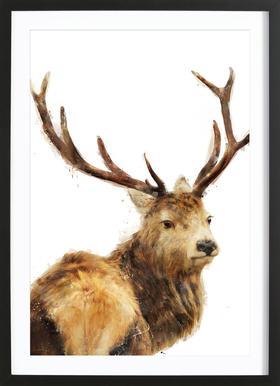 Winter Red Deer -Bild mit Holzrahmen