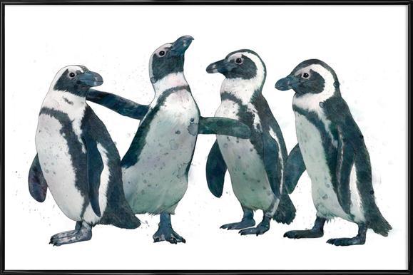 Penguins affiche encadrée