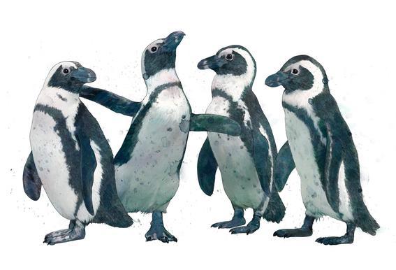 Penguins tableau en verre