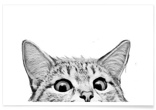 Cat -Poster