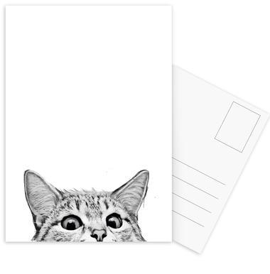 Cat ansichtkaartenset