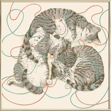 Sleeping Cats poster in aluminium lijst