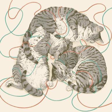 Sleeping Cats canvas doek