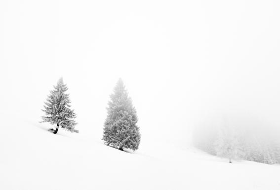 Winter Tag 21