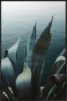 Agava Framed Poster