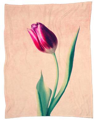 Tulip plaid