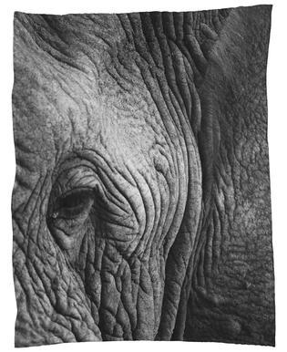Nambithi Elephant 01 -Fleecedecke