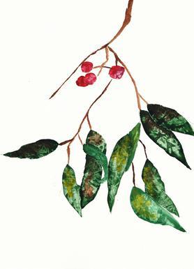 Autumn Berry 2 Canvastavla