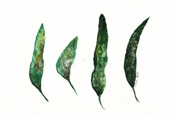All My Leaves Aluminiumtavla