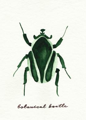 Botanical Beetle