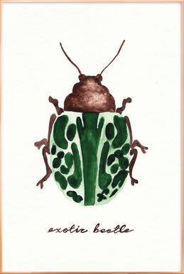 Exotic Beetle Poster in Aluminium Frame