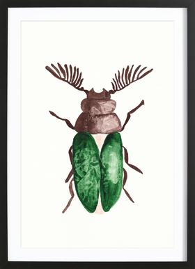 Greeny Beetle Framed Print