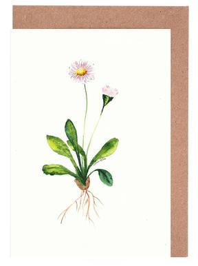 Daisy Greeting Card Set