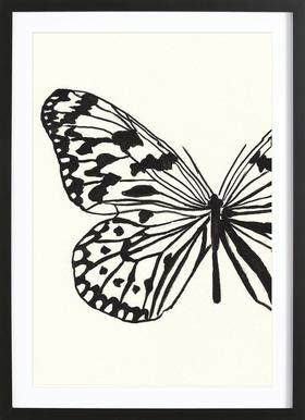 White butterfly Framed Print