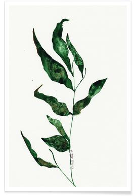 Green Nature affiche