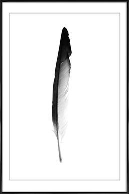 Feather - Poster im Kunststoffrahmen