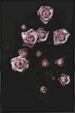 Velvet Rose Pink ingelijste poster