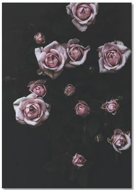 Velvet Rose Pink Notepad