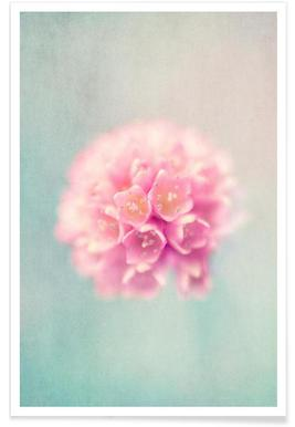 baby pink -Poster