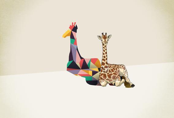 Walking Shadow - Giraffe