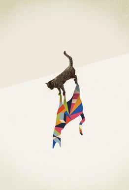 Walking Shadow - Cat Acrylic Print