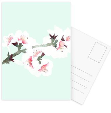 Cherry Blossom Postcard Set