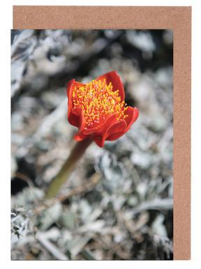 Mountain Flower Greeting Card Set