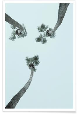 Palm Springs - Premium Poster