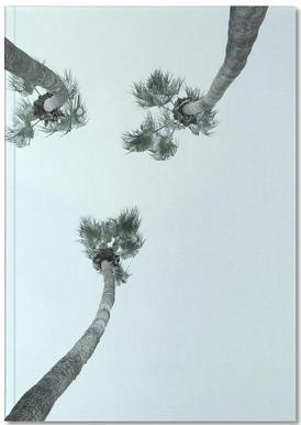 Palm Springs Notebook