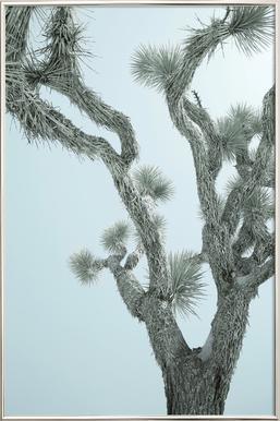 Joshua Tree Poster in Aluminium Frame