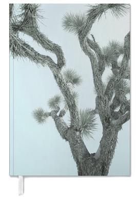 Joshua Tree -Terminplaner