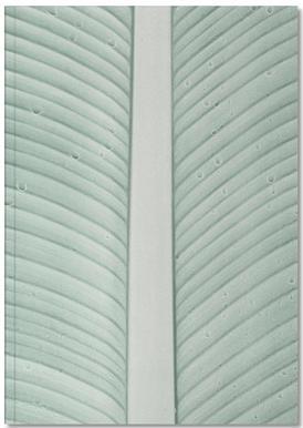 Strelitzia 01 Notebook