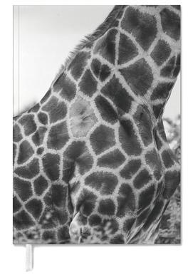 Giraph detail