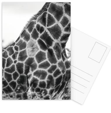 Giraph detail Postcard Set