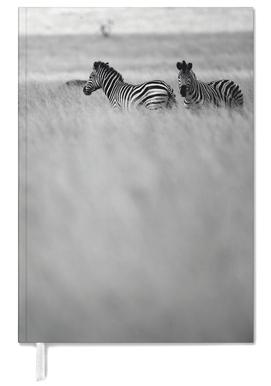 Zebra Pair