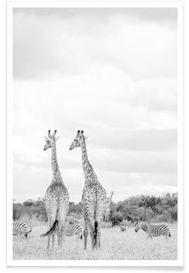 Giraph couple -Poster