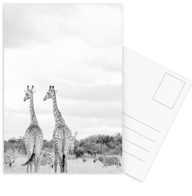 Giraph couple Postcard Set