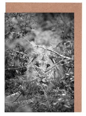 Lion -Grußkarten-Set
