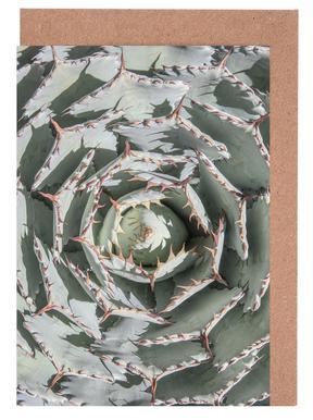 Agave -Grußkarten-Set
