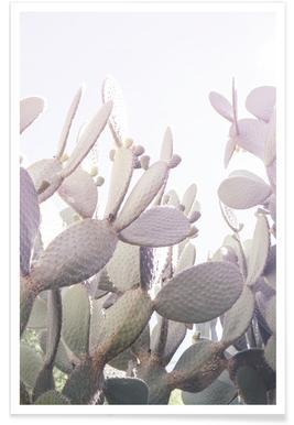 Desert Prince 2 - Poster