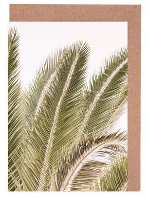 Oasis Palm 1