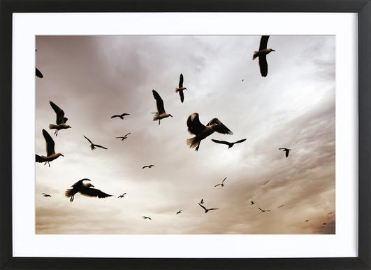 Flight & Freedom Framed Print
