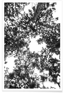 Japanese Garden 4 -Poster