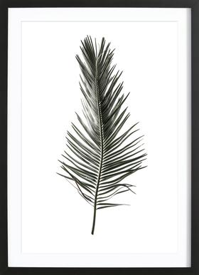 Leaf Study 3 - Poster in Wooden Frame