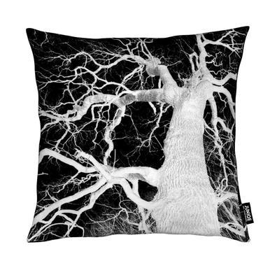Oak Tree 1